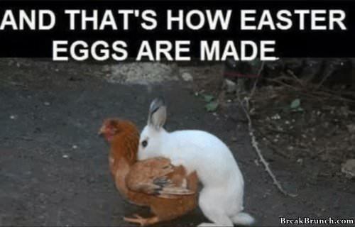 how-easter-egg-ae-made-0109191253
