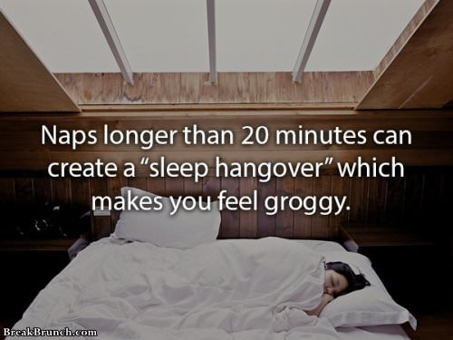 17 fascinating facts about nap