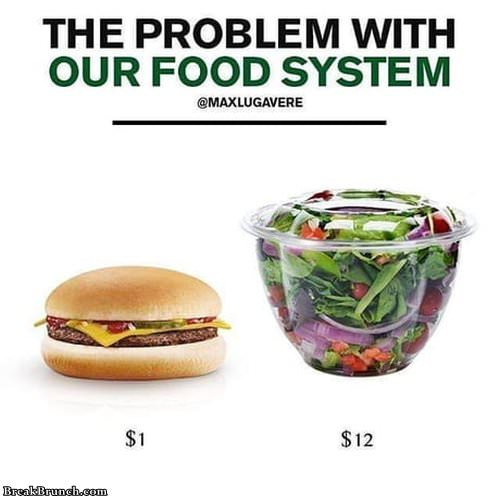 problem-with-food-system-012019
