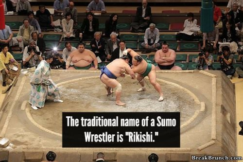 18 facts about ancient SUMO