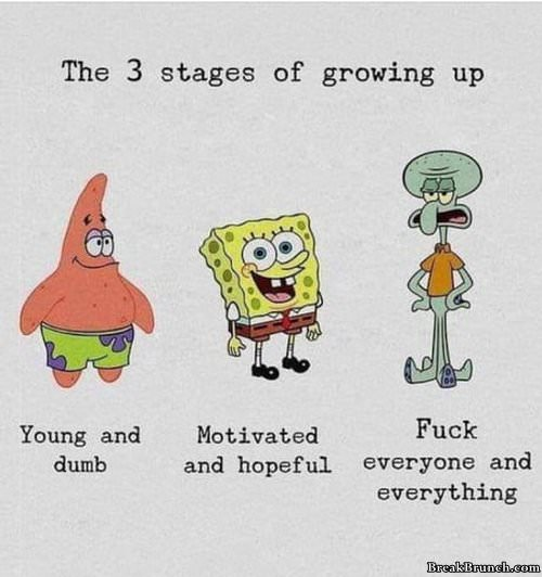 3 stages of growing up