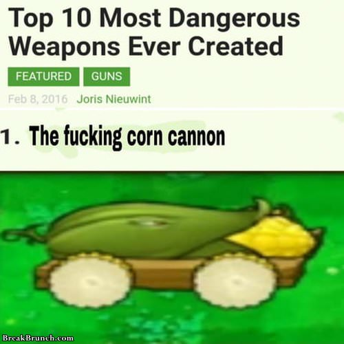 corn-cannon-030119