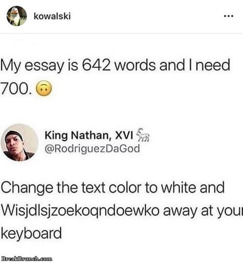 how-to-write-700-words-essay-052319