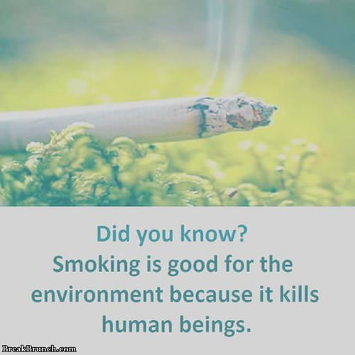 smkoing-is-good-for-enviroment-032619
