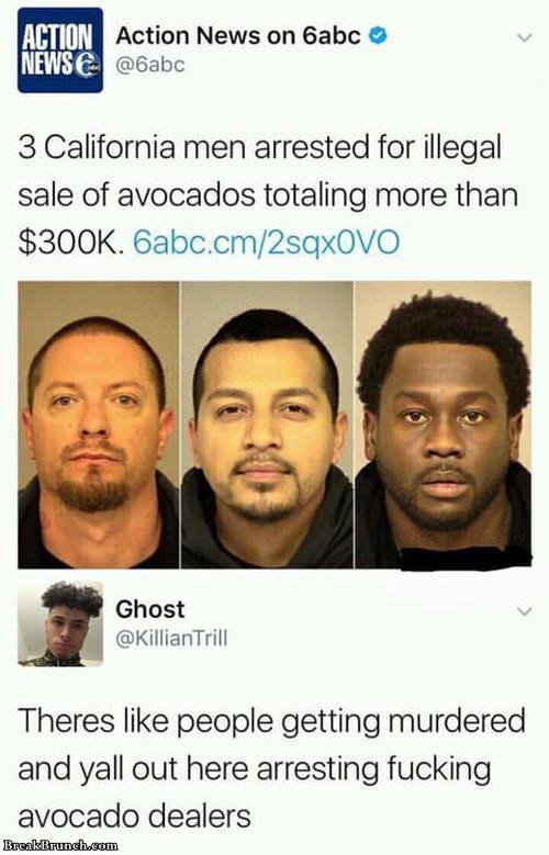 avocado-dealer-062119