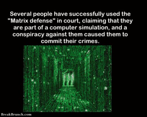 People successfully used the Matrix fense in court