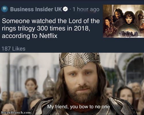 someone-watched-lord-oif-ring-300-time-in-2018-03019
