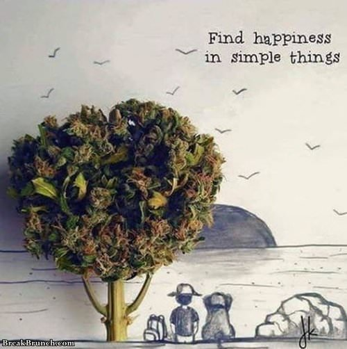 find-happiness-in-simple-thing-101619