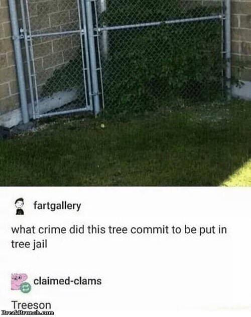 Trees commit treeson