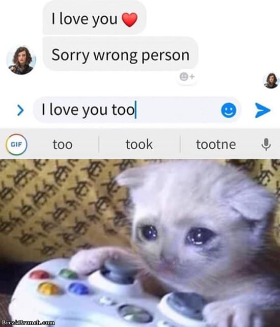 Wait, I love you too