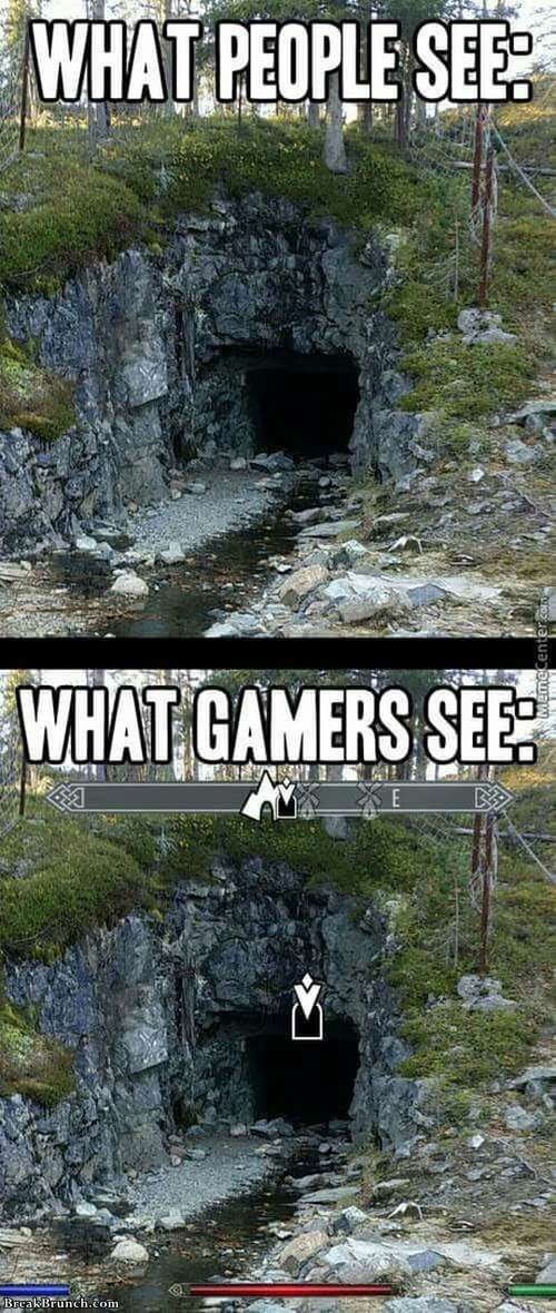 What gamers see