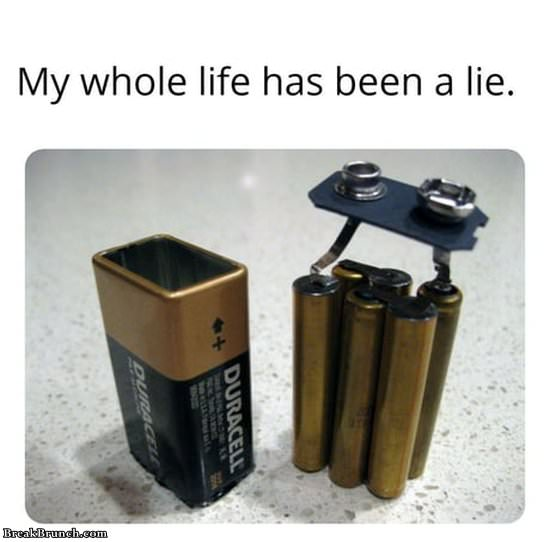 Whole life has been a lie