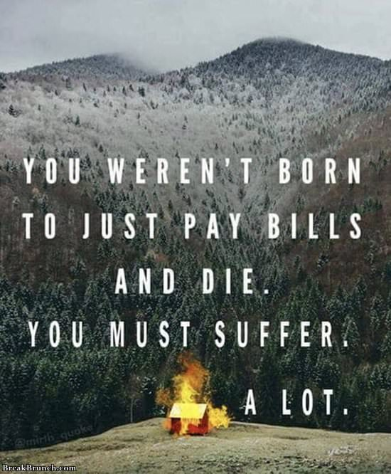 you-werent-born-to-just-pay-bills-11919