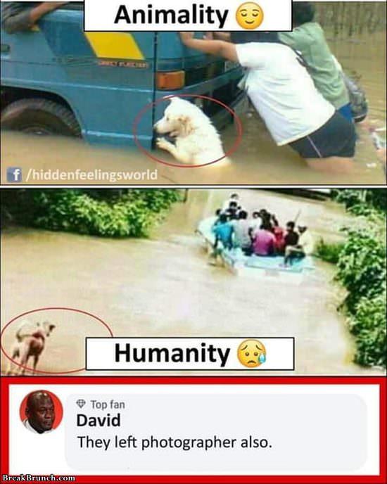 animality-vs-humanity-1100619