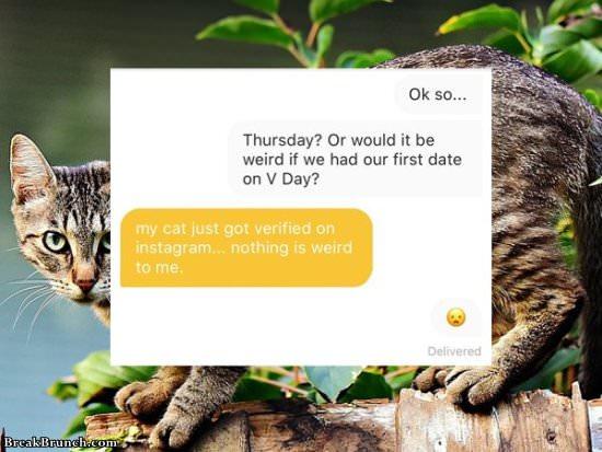dating newsletter