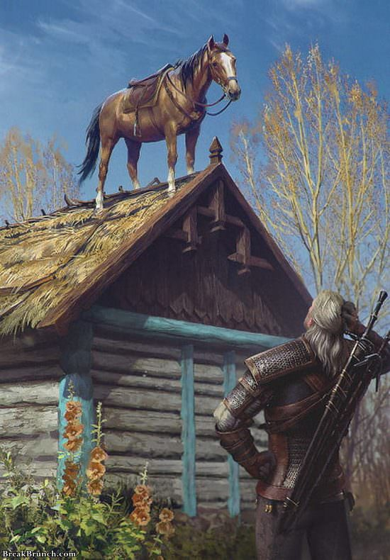 Funny horse scene from Witcher 3