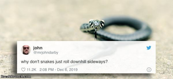18 funny tweets you have to see