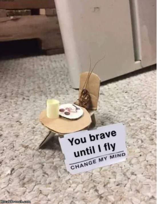you-brave-until-i-fly-121419