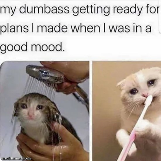 getting ready for bad plans