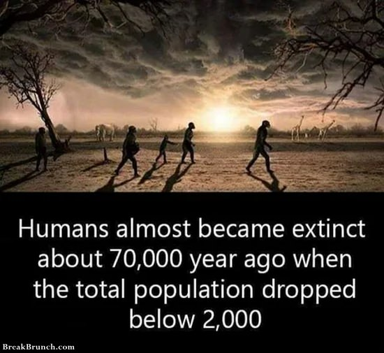 Humans almost became extinct 70000 bc