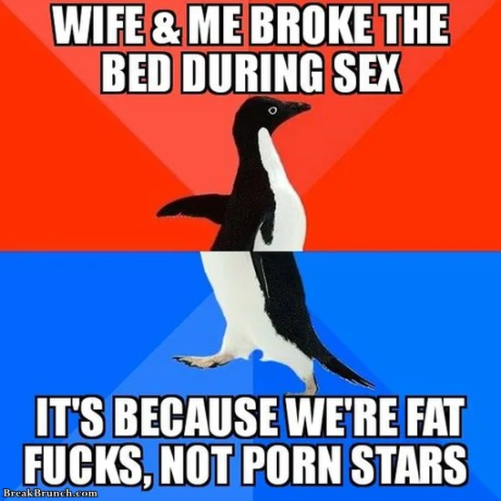 Wife and me broke the bed during sex
