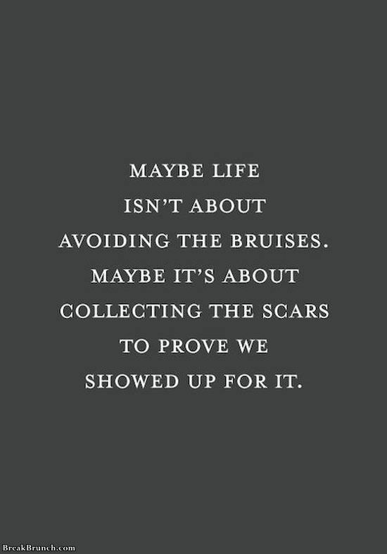 life-isnt-about-avoiding-bruises-quote-11320