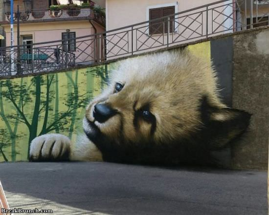 35 amazing street graffiti you have to see
