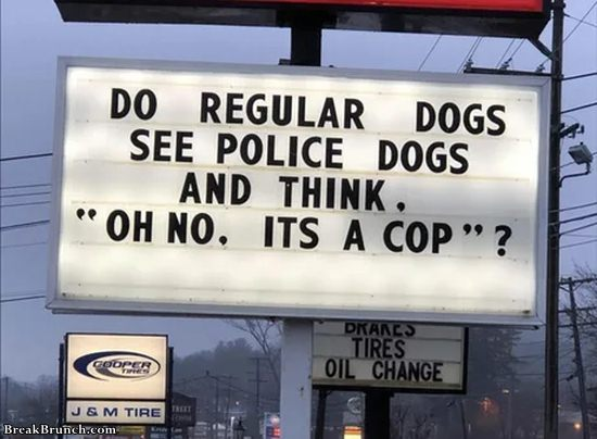 Regular dogs see police dogs