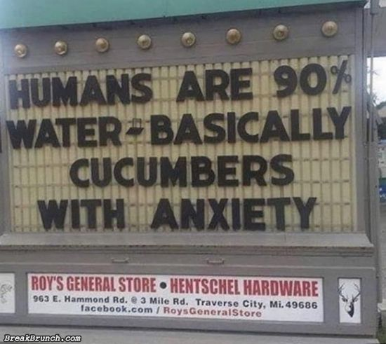 Humans are cucumbers with anxiety