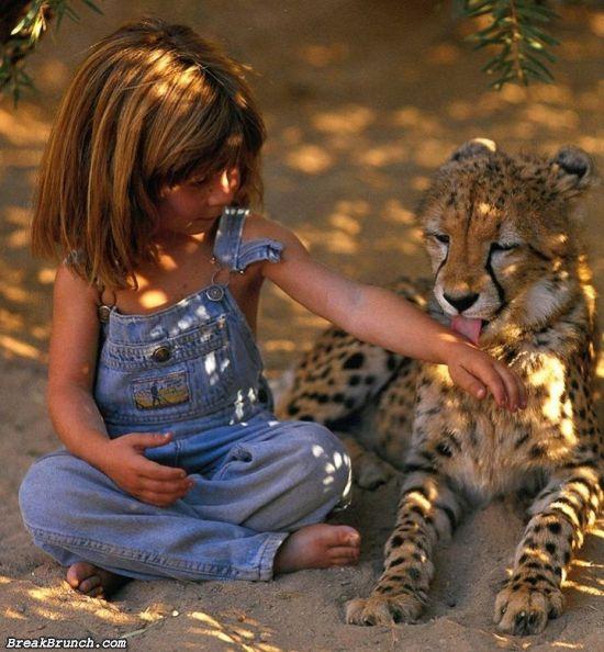 cute-animal-5ea35bc89f920ebf2