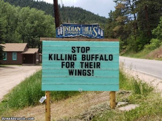 Stop killing buffalo for their wings
