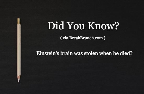 did-you-know-fact-5eaa0b013e19d3d7e