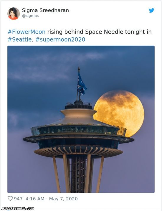21 stunning pictures of supermoon 2020