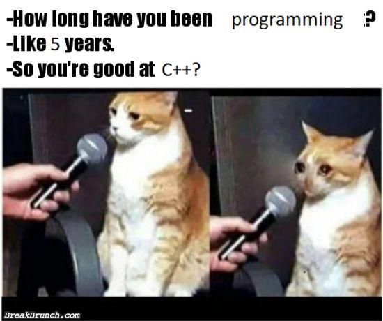 developer-humor-5ea8933eb4c3f8fd0