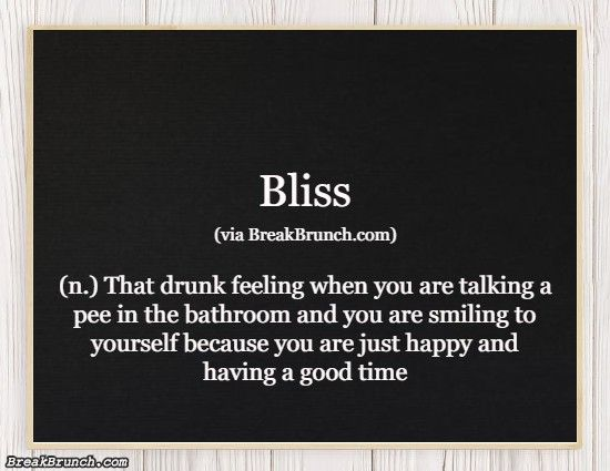 Hilarious Honest Dictionary – Bliss