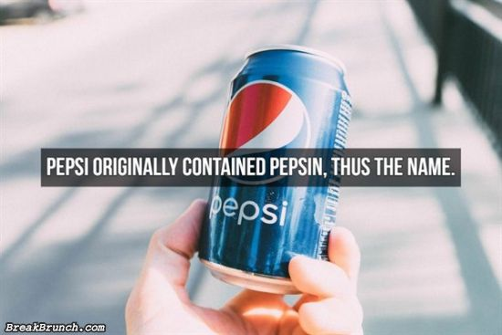 25 useless facts you do not need to know
