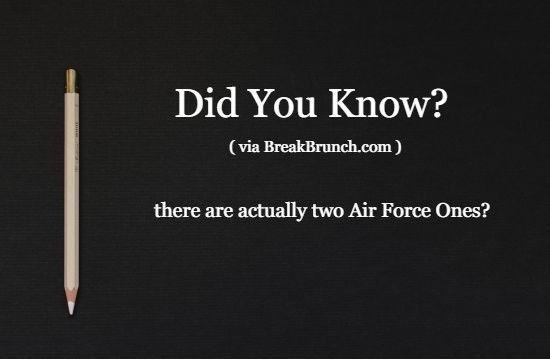 did-you-know-fact-5eaa0bbee79a4779e