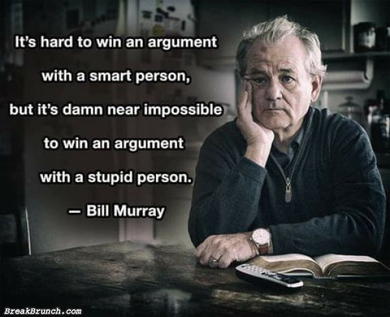 It is impossible to win an argument with an stupid person – Bill Murray