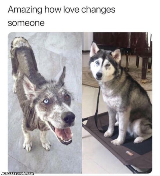 Amazing how loves changes someone