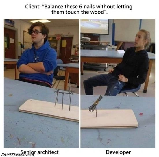 Difference between senior architect and developer
