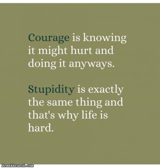 Difference between courage and stupidity