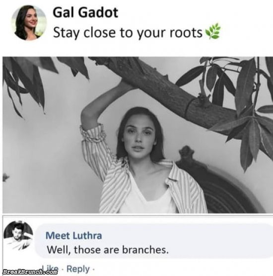 Stay close to your roots