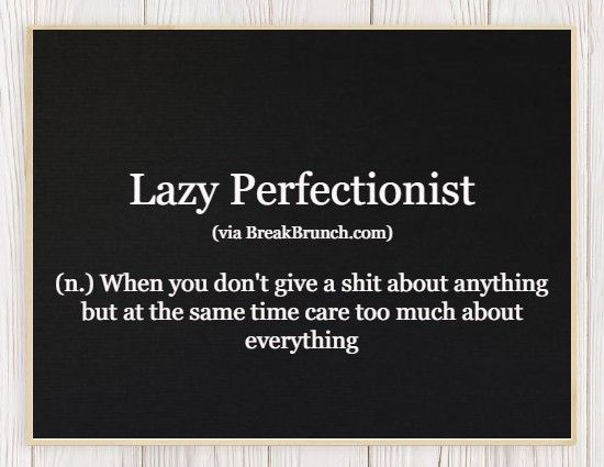 Hilarious Honest Dictionary – Lazy Perfectionist