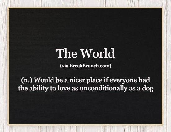 Hilarious Honest Dictionary – The World