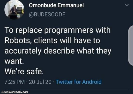 Programmers are safe