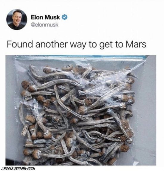 Elon found another way to mars