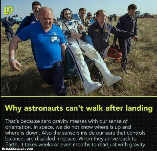 Why astronauts can't walk after landing